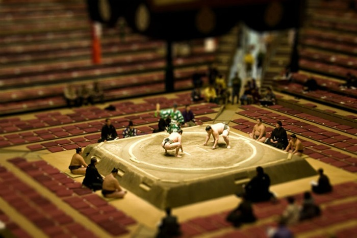 Tilt-shift photograph of sumo wrestlers