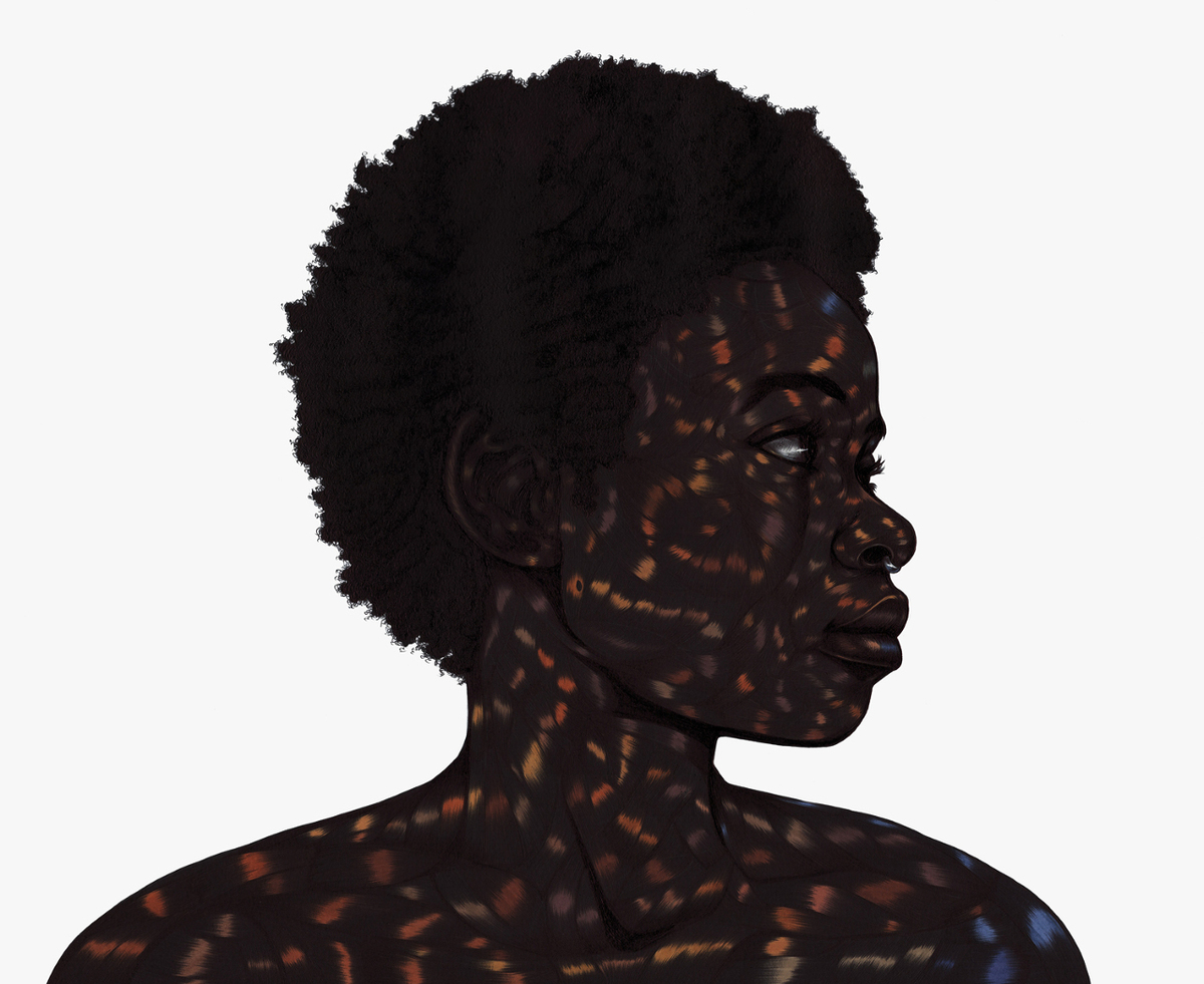 All these garlands prove nothing XI by Toyin Odutola
