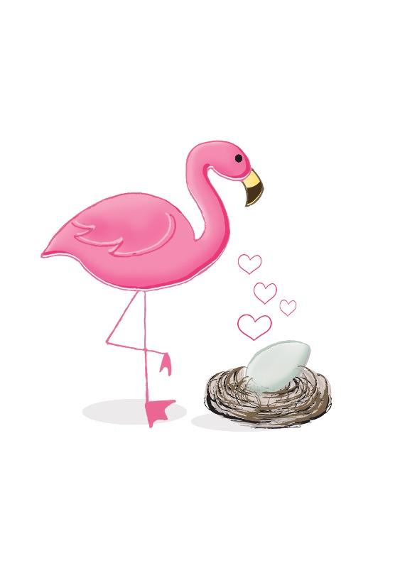 flamingo-baby