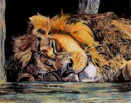 sleeping lion by inuro